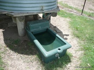 Figure 4. Water trough with green grass growing nearby. Source: Dr Sandra Baxendell.
